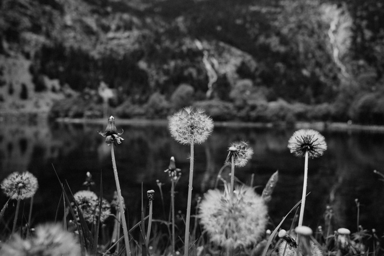 Fotógrafo Bodas Pirineos - Boda en el Pirineo